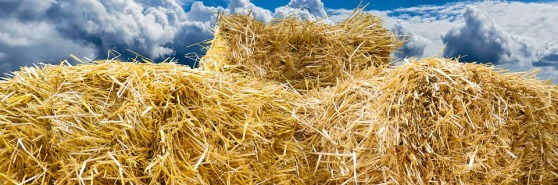 straw-bales-1649856_960_720
